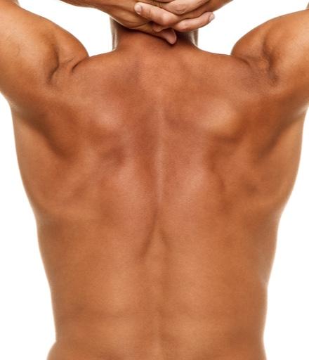 Voks - Ryg inkl. lænd, skuldre & nakke